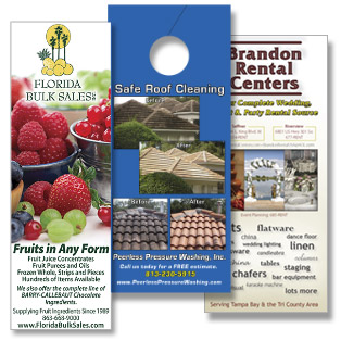 Sample Brochures, Flyers, Door Hangers