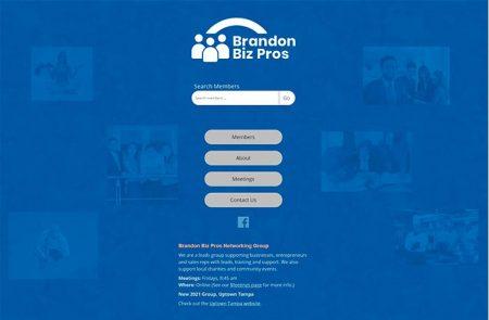Web Design, Brandon Biz Pros
