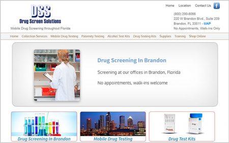 Web Design, Drug Screen Solutions
